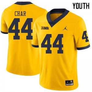 Michigan Wolverines #44 Jared Char Youth Yellow College Football Jersey 410063-614