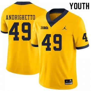 Michigan Wolverines #49 Lucas Andrighetto Youth Yellow College Football Jersey 484997-833